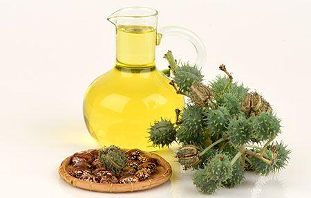 huile de castor