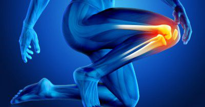 proteger votre genou
